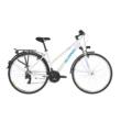 ALPINA ECO LT10 2019 Női Trekking Kerékpár - Több színben