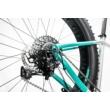 Cube Nutrail Pro Férfi MTB Kerékpár 2017