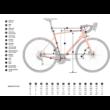 KTM REVELATOR ALTO MASTER Férfi Országúti Kerékpár 2020