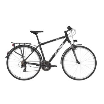 ALPINA ECO T10 Grey 2021